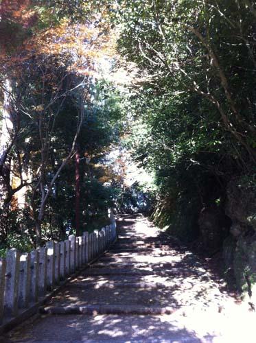 八幡宮 (2).jpg