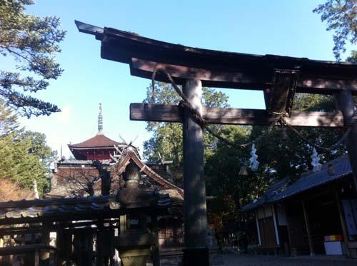 八幡宮 (5).jpg