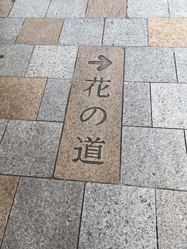 IMG_5307●花の道.jpg