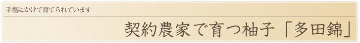 奥丹波の契約農家で育つ柚子「多田錦」